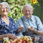4 alimentos para aumentar imunidade em idosos